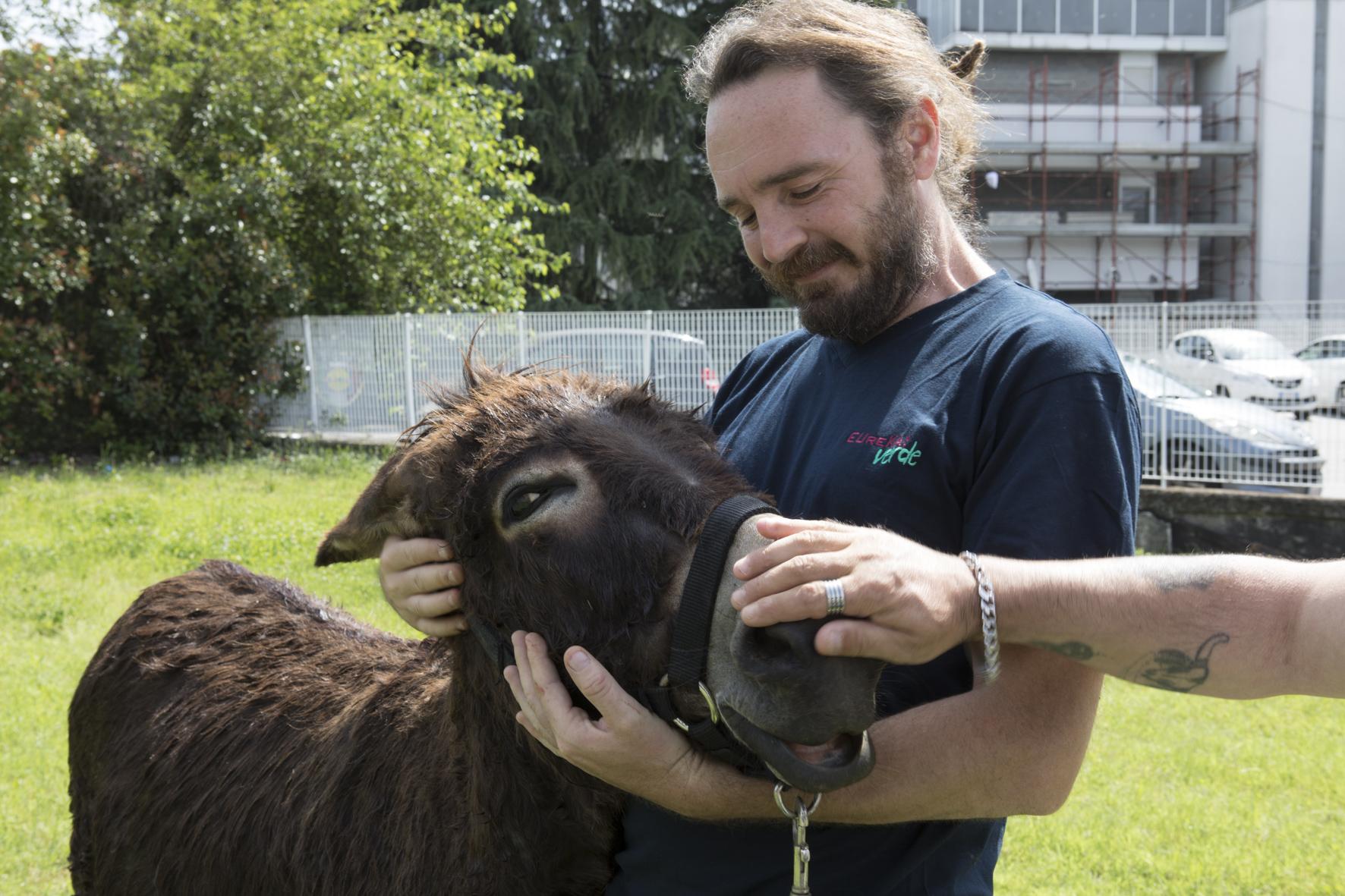Attività assistite con gli animali